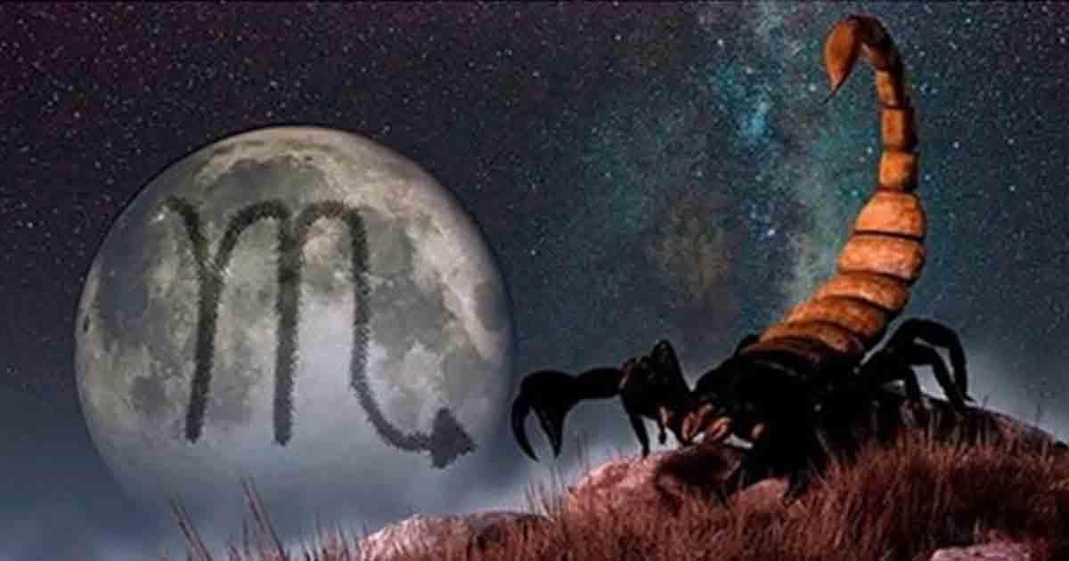 14 качеств Скорпиона, к которым вам лучше быть готовым
