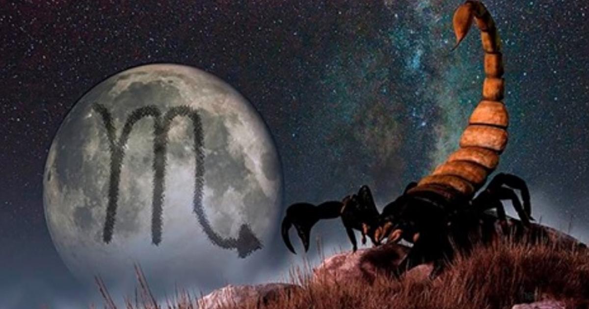 14 жестоких истин о Скорпионе