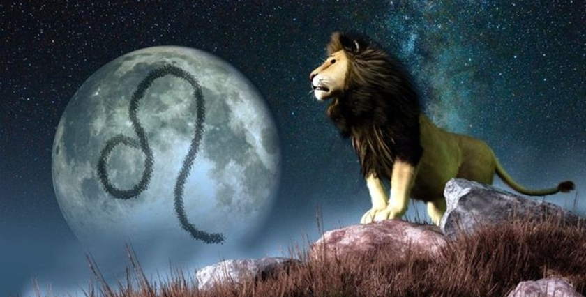 Вот 15 причин, почему Львы — лучшие среди всех знаков Зодиака!