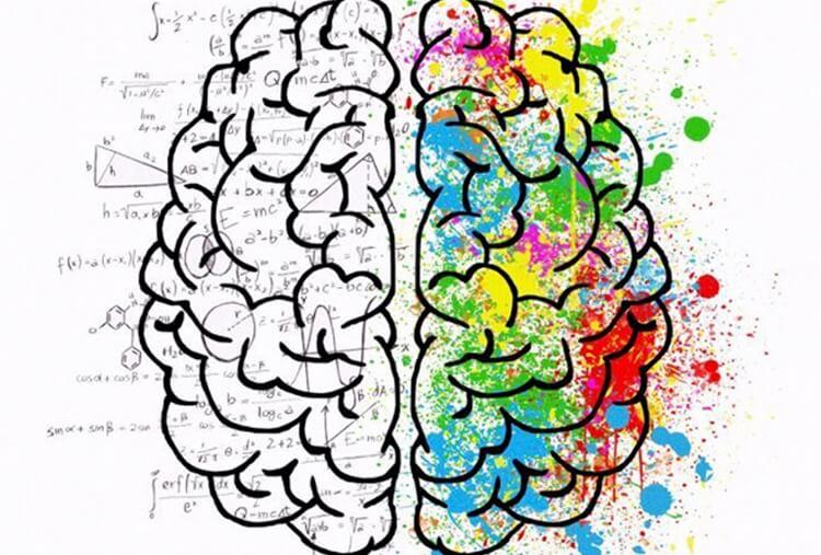 Ученые говорят, что забывчивость — признак высокого интеллекта