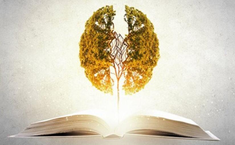7 лучших книг нейробиологов о тайнах мозга и подсознания
