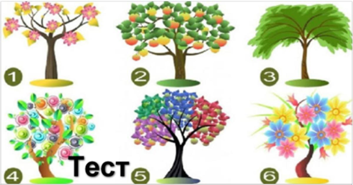 Выберите дерево: тест расскажет, какой вы человек