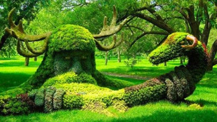 В руках этих садовников деревья и кустарники превращаются в настоящую сказу. (Фото).