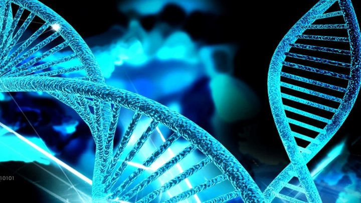 Ментальное упражнение «Программирование ДНК»