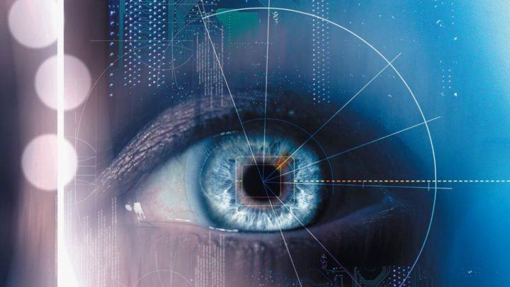 17 продуктов, которые нужно есть, чтобы улучшить свое зрение