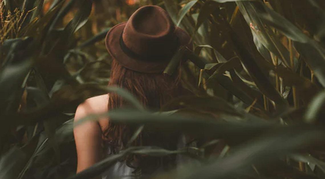 Исследование: умные люди счастливы в одиночестве